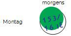 BZ Wert mit grünem Dot